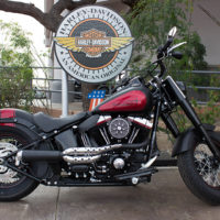 Check Out These Used Harleys Today